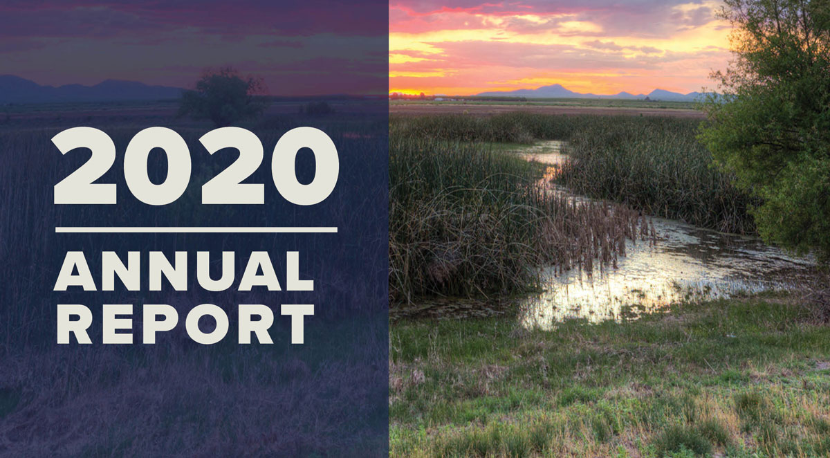 Cover WRRC 2020 Annual Report