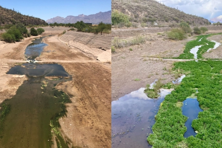 Tucson Water aquifer banking and riparian restoration projects