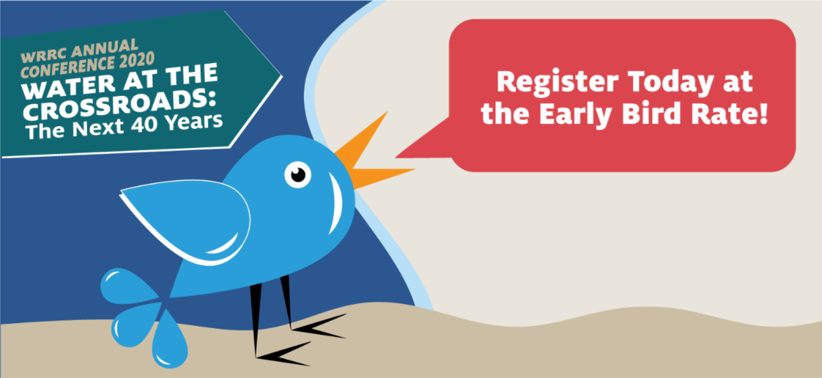 image advertising early bird rate